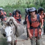 "Max leading ""Churro the Burro"" on his first Philmont trip."