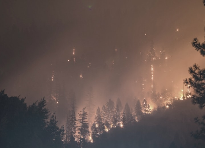 Forest Fire California
