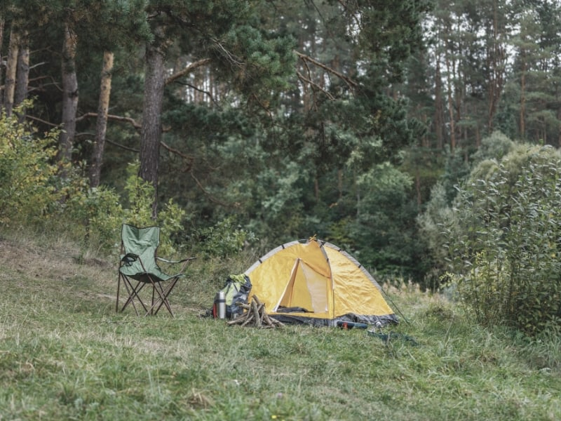 Chair and Tent in Forest_intext