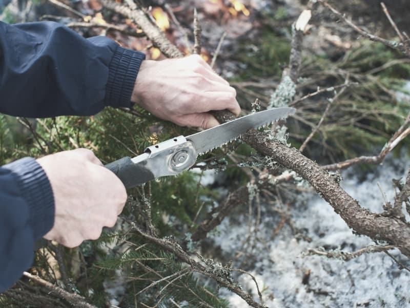 camping folding saw cutting trunk