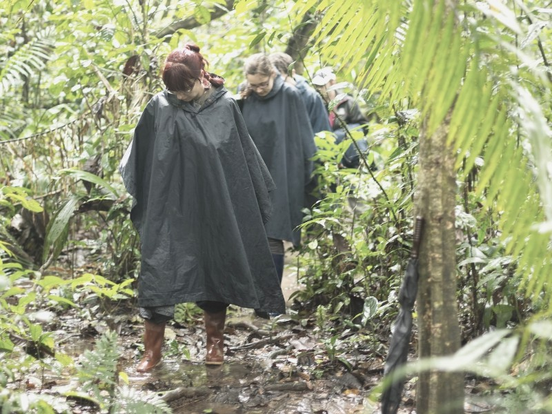 hikers in ponchos