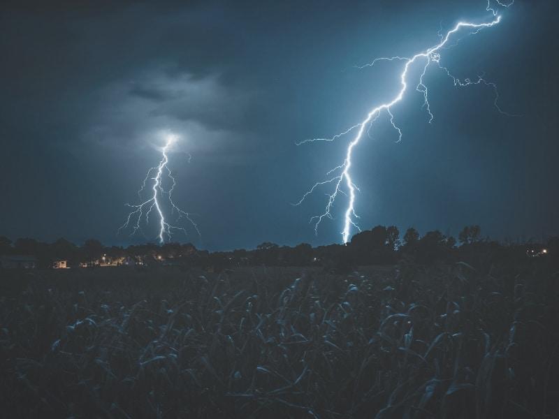 lightning over forest
