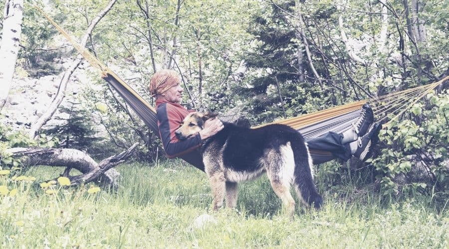 hiker and dog in hammock